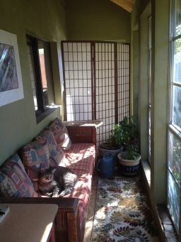 sun room 2014 copy.jpg